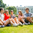 Group of smiling friends outdoors sitting in park — Stock Photo #51785251