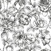 Witte roos patroon — Stockvector