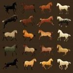 Horse coat colors — Stock Vector #33146563