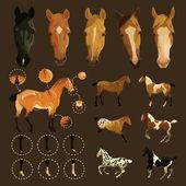 Horse markings — Stock Vector