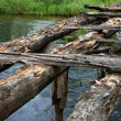 Destroyed the wooden bridge - Stock Photo