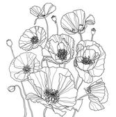 Coloring page with poppies — Stock Photo