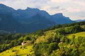 прованс. холмы и горы летом. — Стоковое фото
