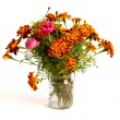Bunch of Tagetes in glass — Stock Photo