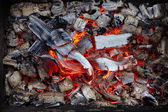Close-up of burning charcoal — Stock Photo