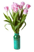 Pink tulips in gree vase isolated on a white background — Stock Photo