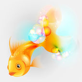 Zlote ryby — Zdjęcie stockowe