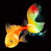 Gold Fish — Stock Photo