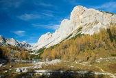 Monte ticarica — Foto de Stock
