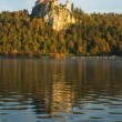 Castle of Bled — Stock Photo