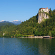 The castle of Bled — Stock Photo #3593037