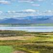 Myvatn — Stock Photo
