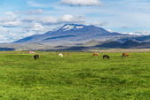 Hekla — Stock Photo