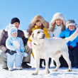 Winter labrador dog — Stock Photo