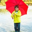 Foto Stock: Boy with umbrella