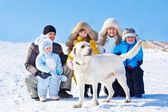 Winter labrador dog — Stockfoto