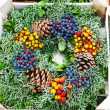 Stock Photo: Evergreen wreath