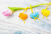 Spring decoration — Stock Photo