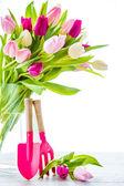 Spring tulips in vase — Stock Photo