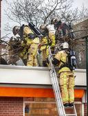 Firemen team — Stock Photo