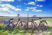 Two adult bikes — Stock Photo