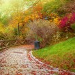 Autumnal stone path — Stock Photo