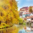 Lovely houses and autumn trees — Stock Photo
