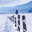 Winter fields — Stock Photo