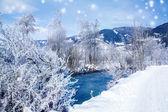 зимний сельский пейзаж — Стоковое фото