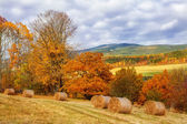 Colorful autumnal countryside — Stock Photo