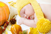 Newborn kid among pumpkins — Photo