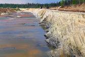 The destruction of nature — Stock Photo