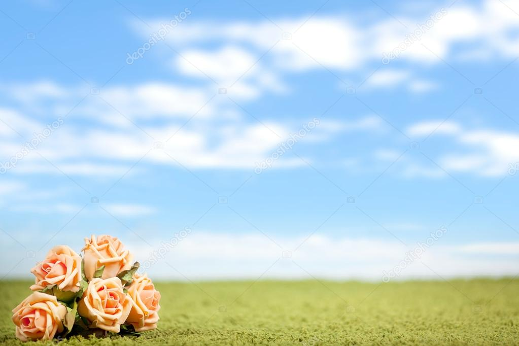 Photo-illustration of roses on a lawn — Stock Photo #13882490