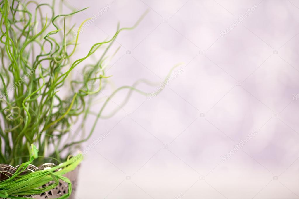 Amazing shape of grass — Stock Photo #13882904