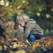 Little boy and autumn leaves — Stock Photo #14326043