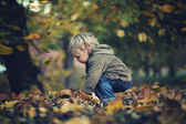 Little boy and autumn leaves — Stock Photo
