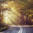 Great shoot of sunbeams above the road — Foto Stock