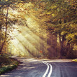 Great shoot of sunbeams above the road — 图库照片