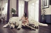 Młoda kobieta tulenie duży pies — Zdjęcie stockowe