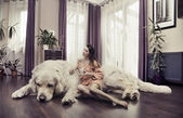 Young woman hugging big dog — Stock Photo