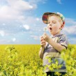 Cute boy playing dandelions on the meadow — Stock Photo #27329625