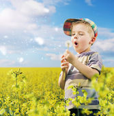 Cute boy playing dandelions on the meadow — Stock Photo