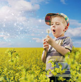 Cute little man having fun with dandelions — Stock Photo