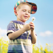 Laughing boy carrying blow-ball in his hands — Stock Photo #27333089