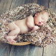 Newborn baby sleeping in wicker basket — Stock Photo