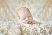 Newborn baby laying on belly — Stock Photo