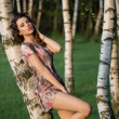 Alluring adult girl leaning on the birch — Foto Stock