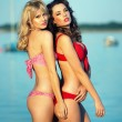 Picture of really pretty girls wearing swimsuits — Stok fotoğraf