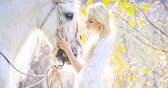 Attractive blonde cutie touching royal horse — Stock Photo
