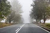 Tembel sabah boş yolda — Stok fotoğraf